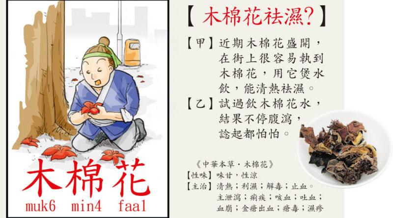 【中醫治療】鮮木棉花煲水 祛濕變助濕 陽虛寒底反致腹瀉