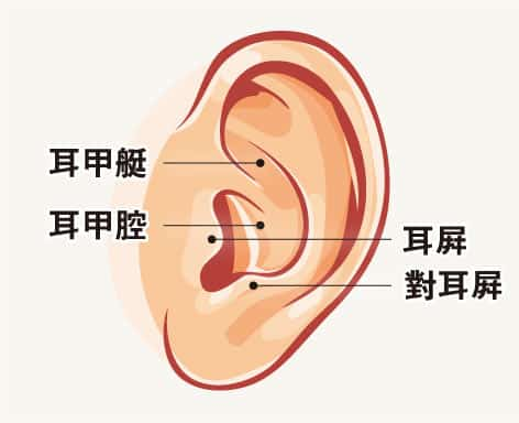 【中醫治療】養生帖:按摩耳穴 有覺好瞓