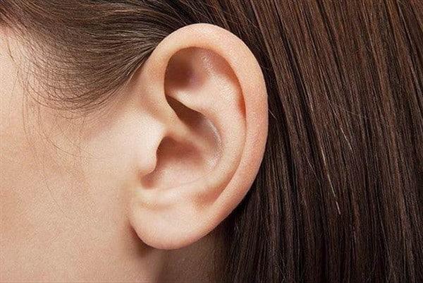 衛理中學多方支援新生 增輔導員 經營一雙雙聆聽耳朵 讓學生安心紓懷