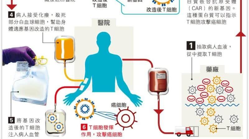 美首准基因療法治血癌 度身訂做只需一次 開治癌新方向