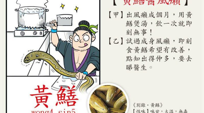 【中醫治療】急性風癩食黃鱔 痕上加痕 慢性有望斷尾