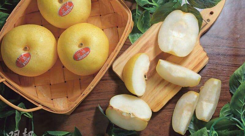 【中醫治療】 和梨成熟時 尋找清甜霸主
