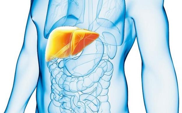 【肝炎與肝癌】50歲後乙肝康復 5年內患肝癌風險較高