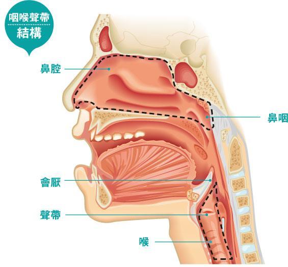 口腔癌, 喉癌