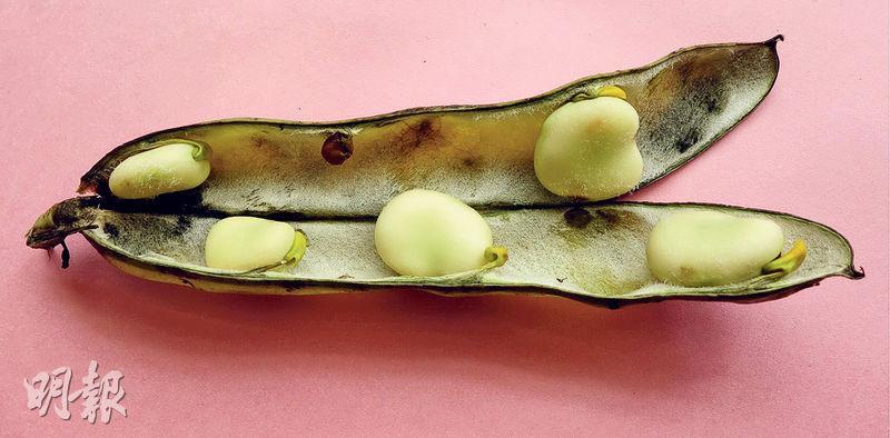 蠶豆症生活飲食禁忌