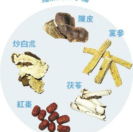 【營養要識】中醫教路:吃鱷魚肉小菜 不如煲藥湯