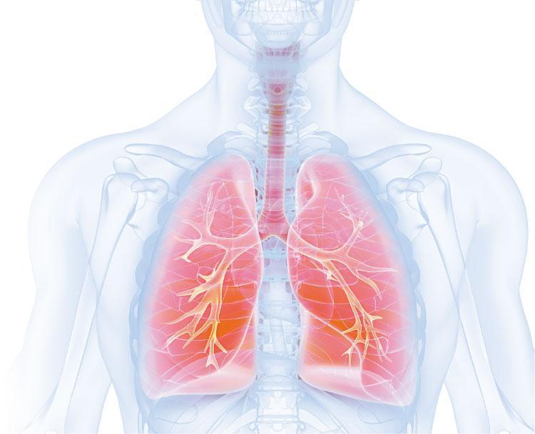 【了解肺癌】混合治療新方案 肺癌四期 未必是盡頭