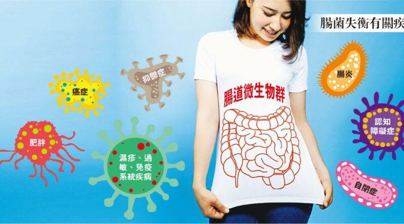 移植腸菌 能醫百病?