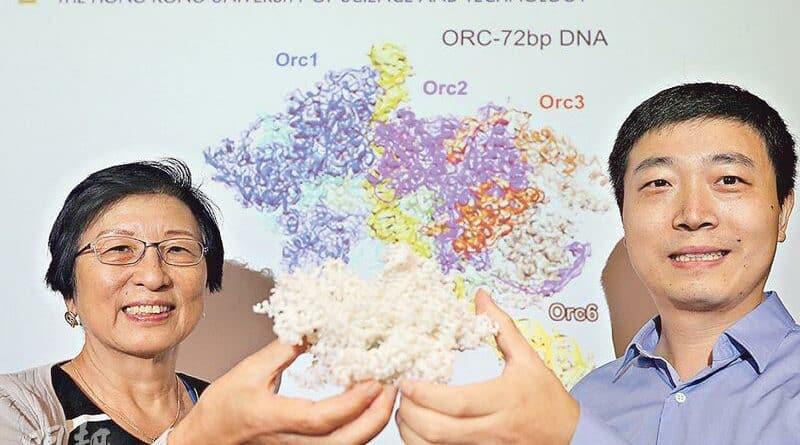 拆解DNA複製機器結構 科大學者:諾獎級發現