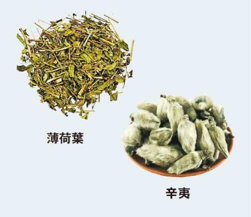 【中醫治療】中醫教路:輕微鼻鼾服通竅茶