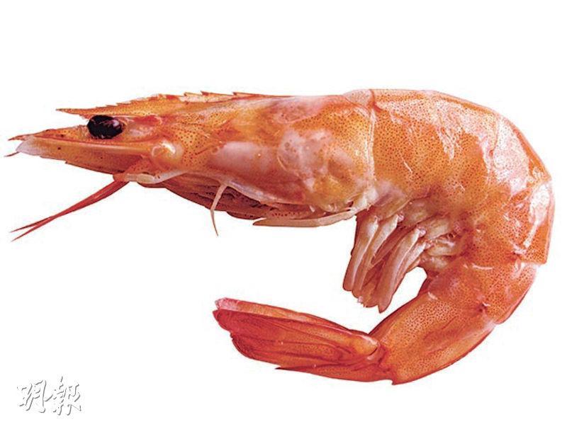 李振洋,葉黃素,護眼,花青素,DHA,奧米加-3,Omega-3,鋅,蝦紅素,蝦青素,三文魚,