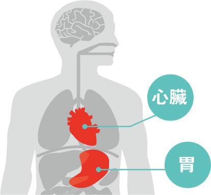 心臟病、胃痛徵狀易混淆 小心隨時無命