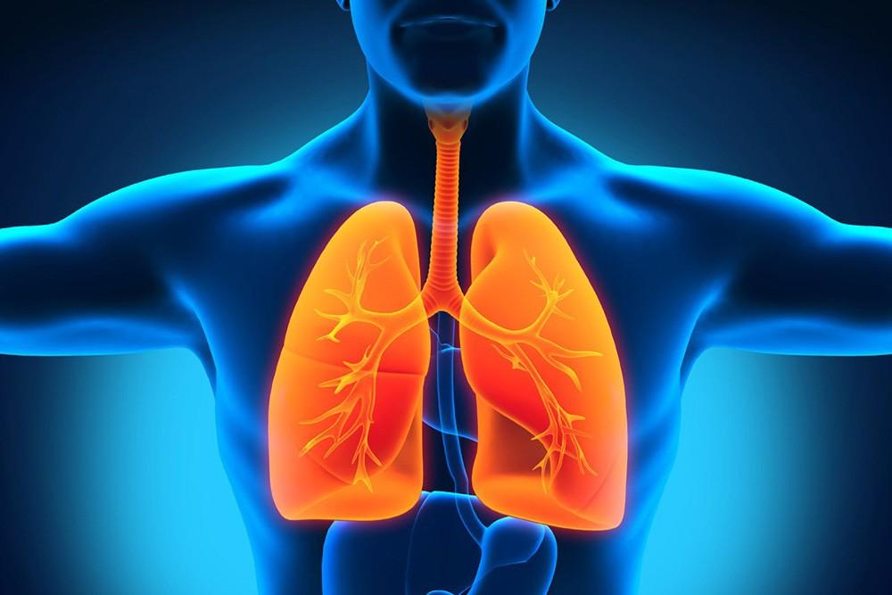 """肺癌,養和特稿,單孔胸腔鏡肺葉切除手術,存活率,微創手術,淋巴,腫瘤"""""""""""