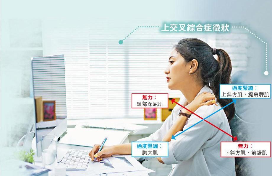 運動消閒,坐姿,肩頸痛,上交叉綜合症,胸廓出口綜合症,魏志榮,香港物理治療學會