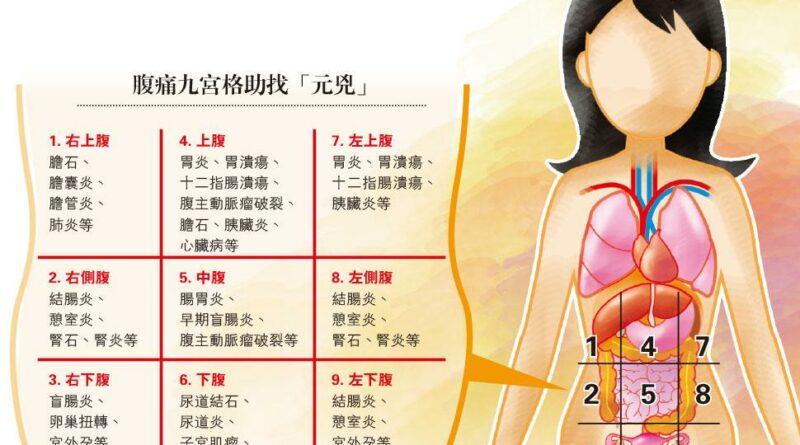 【尿道炎】肚皮九宮格 估算肚痛根源