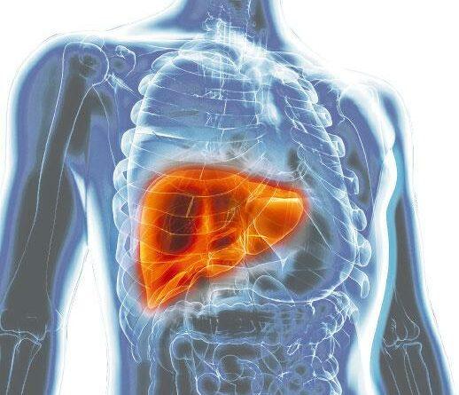 【肝癌】激活免疫系統 K.O.肝癌 二線治療有效率升 副作用較少