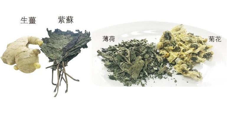 【中醫治療】食療推介:生薑紫蘇散寒 薄荷菊花清熱