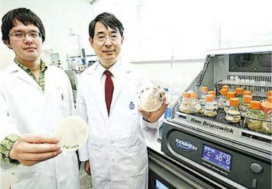 科大發現大腸癌相關毒素 助研化療藥