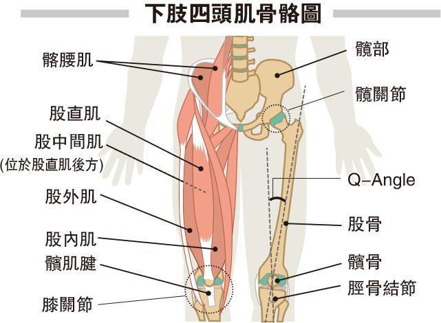 健身3式 強化四頭肌護膝 減輕膝關節發炎退化