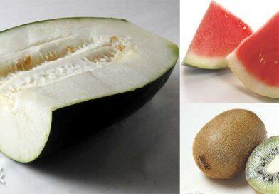 【小滿.二十四節氣】小滿悶熱出汗多 中醫教養生:吃瓜果清熱 冷氣宜保持24度避長開