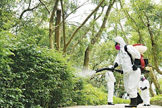 天氣熱被蚊叮痕癢難忍 學識源頭滅蚊 善用滅蟲燈、蚊香、蚊貼