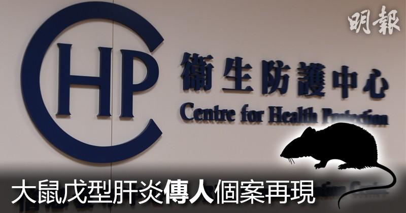 【大鼠戊型肝炎】衛生防護中心:本港第12宗人類感染大鼠戊型肝炎 了解病徵、傳染途徑及預防方法