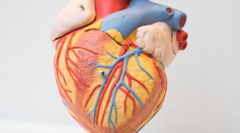 養和醫院心臟導管介入資助計劃 支援4類結構性心臟病患者
