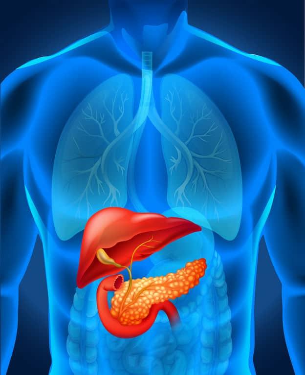 胰臟癌|無聲殺手注意3大病徵 與高齡、煙酒、肥胖有關
