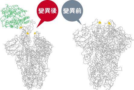 新冠肺炎丨英國丹麥荷蘭意大利現新變種病毒株 梁卓偉:港若現輸入個案繁殖率由0.81增至1.42 科學家推斷變異令病毒如鎖匙般易插入細胞