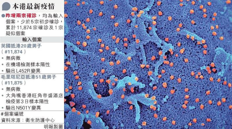 圖為電子顯微鏡下的新型冠狀病毒,經電腦掃描着色為橙色。(資料圖片)