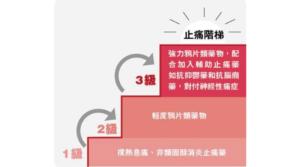 有疼痛食止痛藥?過量影響胃肝腎心血管 世衛止痛階梯3個階段 1級由撲熱息痛開始 循序漸進減副作用
