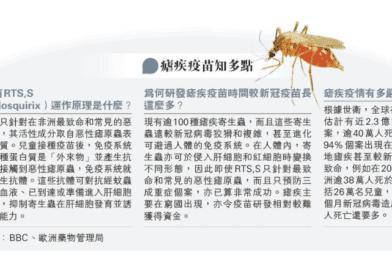 【瘧疾】瘧蚊叮咬感染5個徵狀 併發症可致死亡 全球年逾40萬人死於瘧疾 較新冠病毒更狡猾(附瘧疾疫苗知多啲)